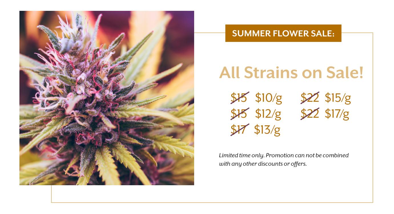 summer-flower-sale